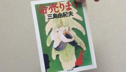 三島由紀夫「命売ります」に見る魂の叫び